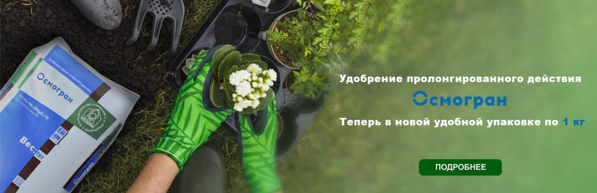 """Баннер """"Осмогран"""""""