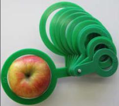 Кольца для определения размера плодов